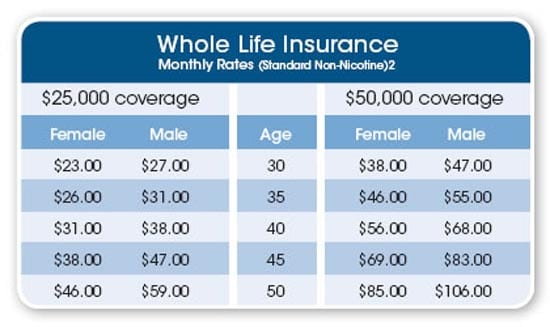 Life Insurance Quotes Whole Life Captivating What Is Whole Life Insurance  Gajizmo