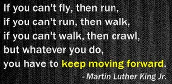 If You Can't Fly, Then Run - Quote